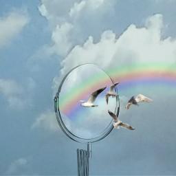 birds rainbow clouds sky mirrorremix freetoedit