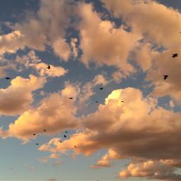freetoedit nature sky turkey cloud