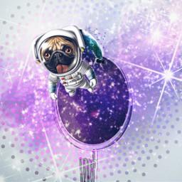 freetoedit mirror dog space remixed