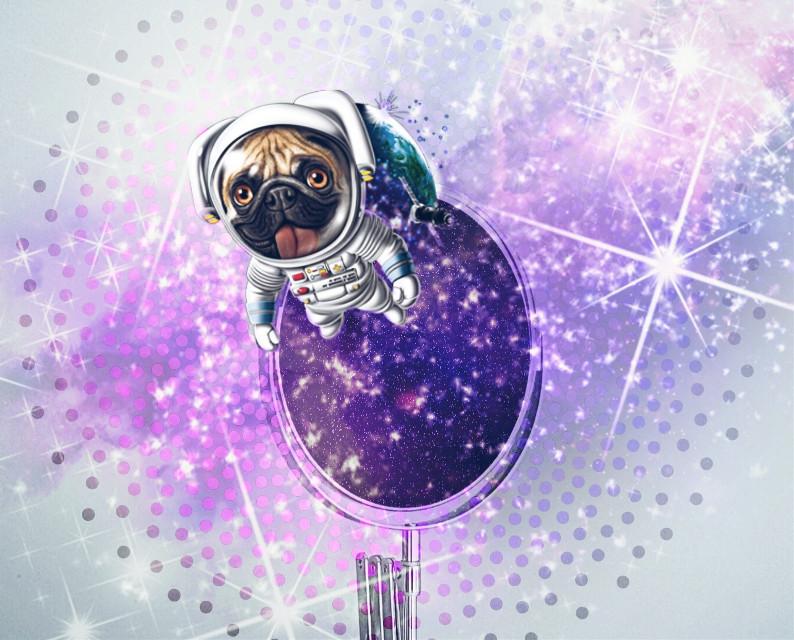 #freetoedit #mirror #dog #space #remixed #myremix #remixit