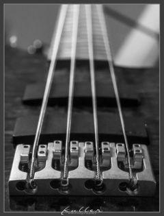 e-bass music bnw blackandwhite strings