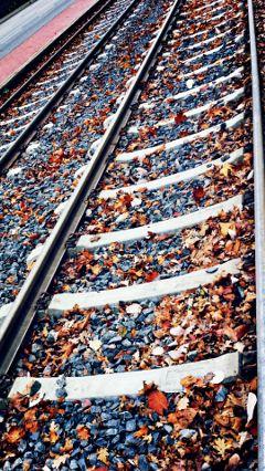 pautzispics traintracks bahnschienen laub autumnleaves