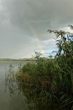 freetoedit photography holiday water rainbow