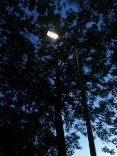 freetoedit lantern bluesky black&white b&w