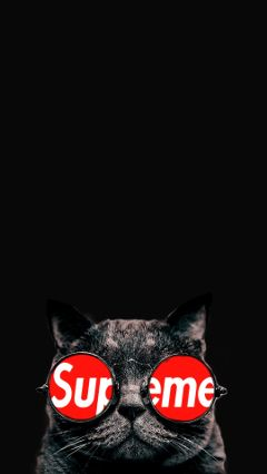 freetoedit logo supreme cat catsofpicsart