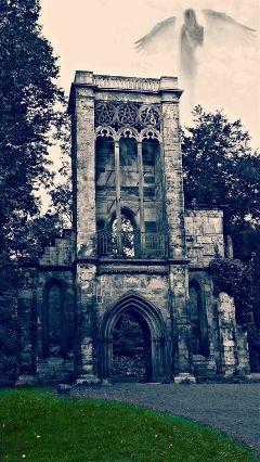 ruin art cemetery artdesign angle