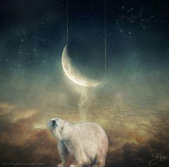 moon stardust starry constellation surreal