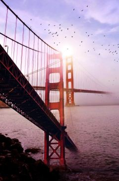 freetoedit bridge bridges photography doubleexposure