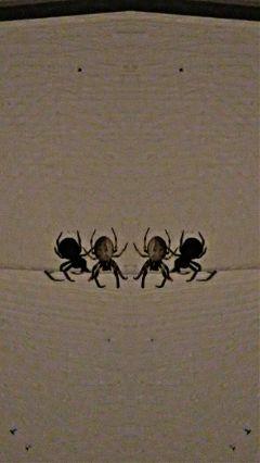 freetoedit spider myphoto editedwithpicsart mirroreffect