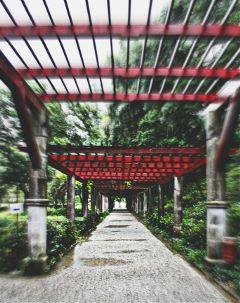 garden red way zoomeffect
