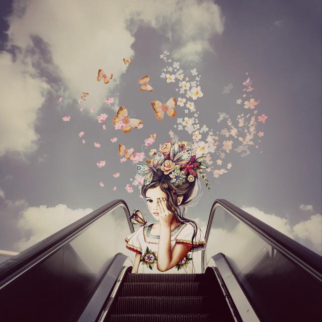 #flower #butterfly