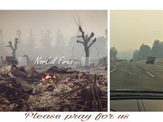 california disaster world agenda love