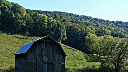 photography nature colorful season autumn freetoedit