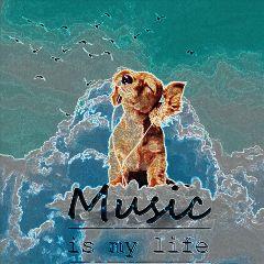 freetoedit puppy music