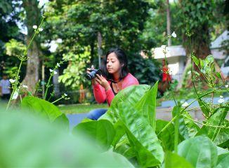 photography nature hobby