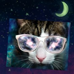freetoedit cateyes space glasses stardust