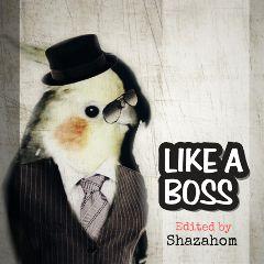 freetoedit shazahom1 boss handsome likeabossstickerremix