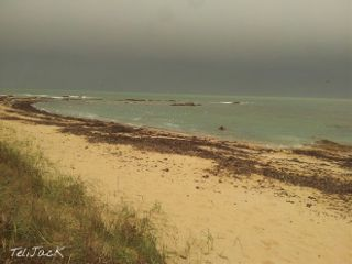 freetoedit nature noirmoutier beach couleursdemer