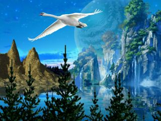freetoedit nature earth forest surreal
