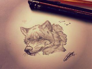 wolf realistic ish idk myart