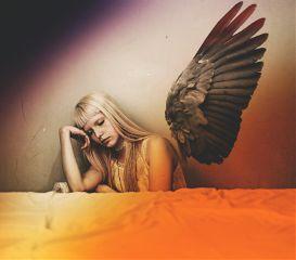 freetoedit fxtools seafoameffect angel wing