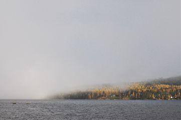 autumn fog mist freetoedit