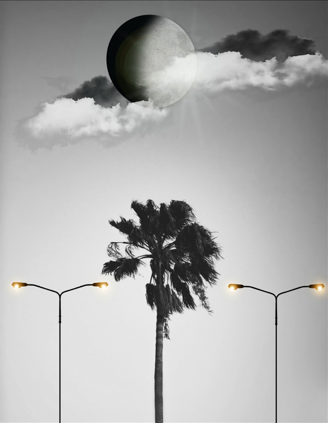 #palmtrees#lamp#night#clouds#blackandwhite#bla#hdr