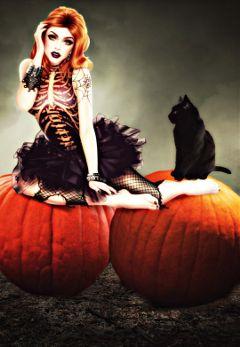 october myart witch pumpkin blackcat