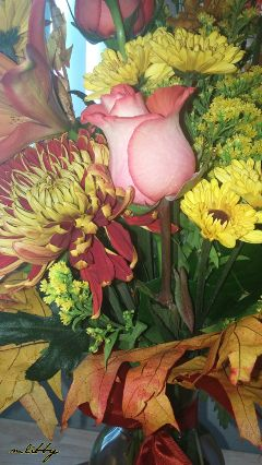 flowers fallbouquet autumnflowers beautiful colorful