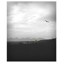 hightatras yellowjacket kiteflying