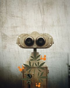 freetoedit robot plant fruit binocularremix
