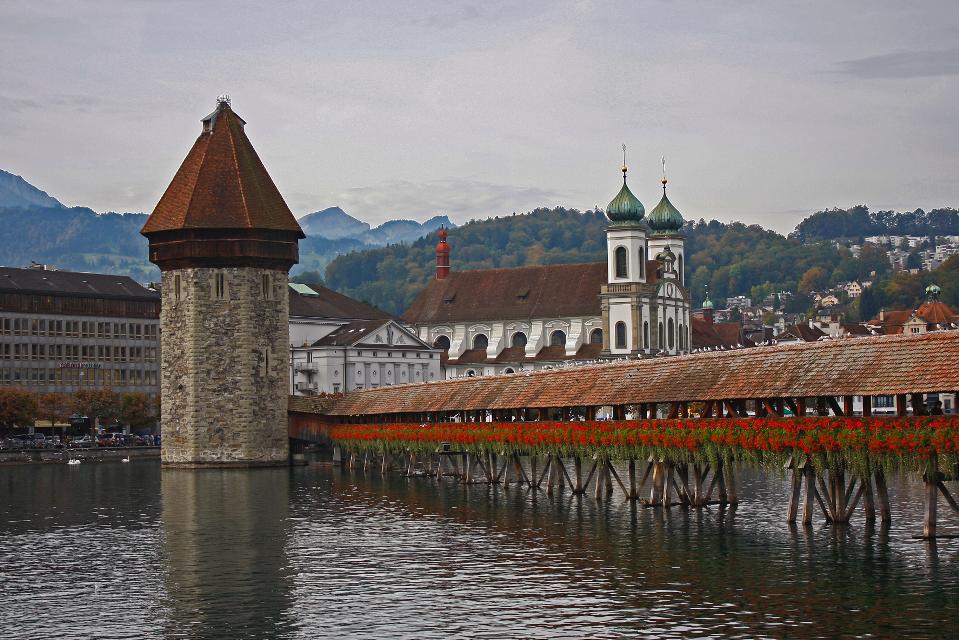 #landscape #travel #luzern Swiss #bridge #lake #birds