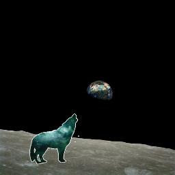 wolf moon freetoedit