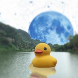 duck moon love freetoedit