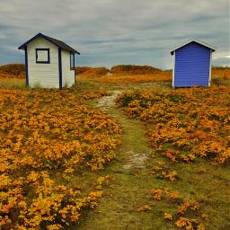 path beachcabins sweden autumn colddays