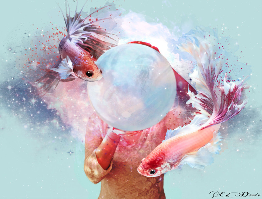 #edited #remixed #surreal #whimsical #clipart 🐠