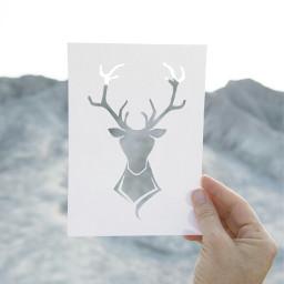 freetoedit love deerhead deer