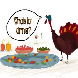 freetoedit turkeythoughts thanksgiving turkey