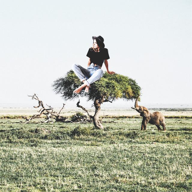 #giant #elephant #girl #tree #nature