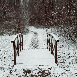 freetoedit pcwhite white snow snowwhether pcwinterparks pcmyfavshot
