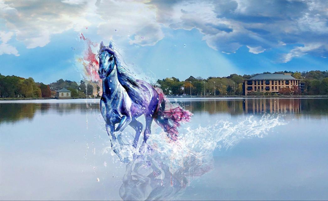 #horse  #surreal #splash