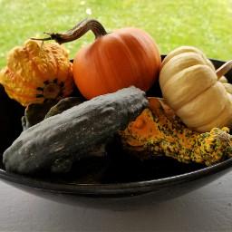 thanksgivingdecor autumn egphotography freetoedit