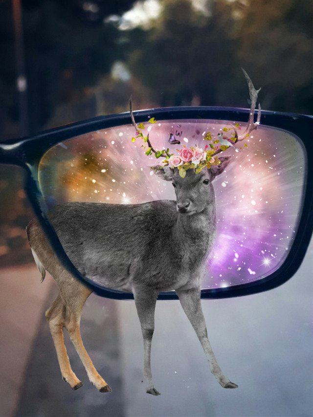 #edited #doubleexposure #hipster #deer #glasses #outofframe #bird roses  Op @bunnysensei @susannepodlaha4 @danny-bee @ldestiny697