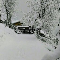 snow welcomewinter pcwhite white winterlove freetoedit