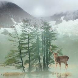 freetoedit mountainview mountain deer madewithpicsart