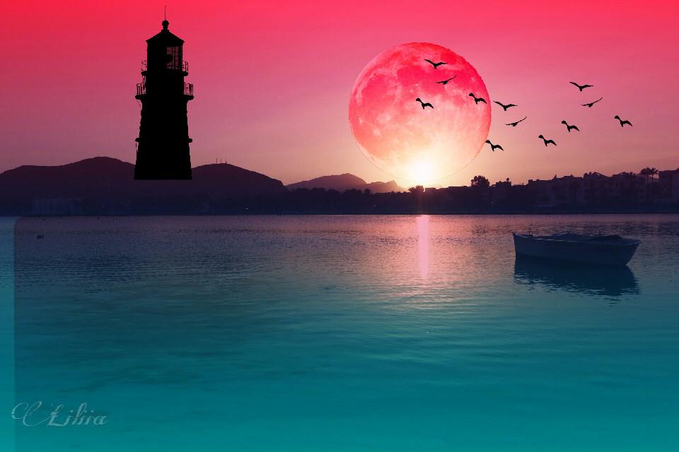 #nature #landscape #water #sunset #myedit #adjusttools #stickers #madewithpicsart
