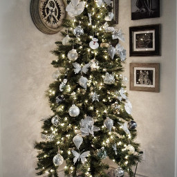 christmas christmastree christmastime