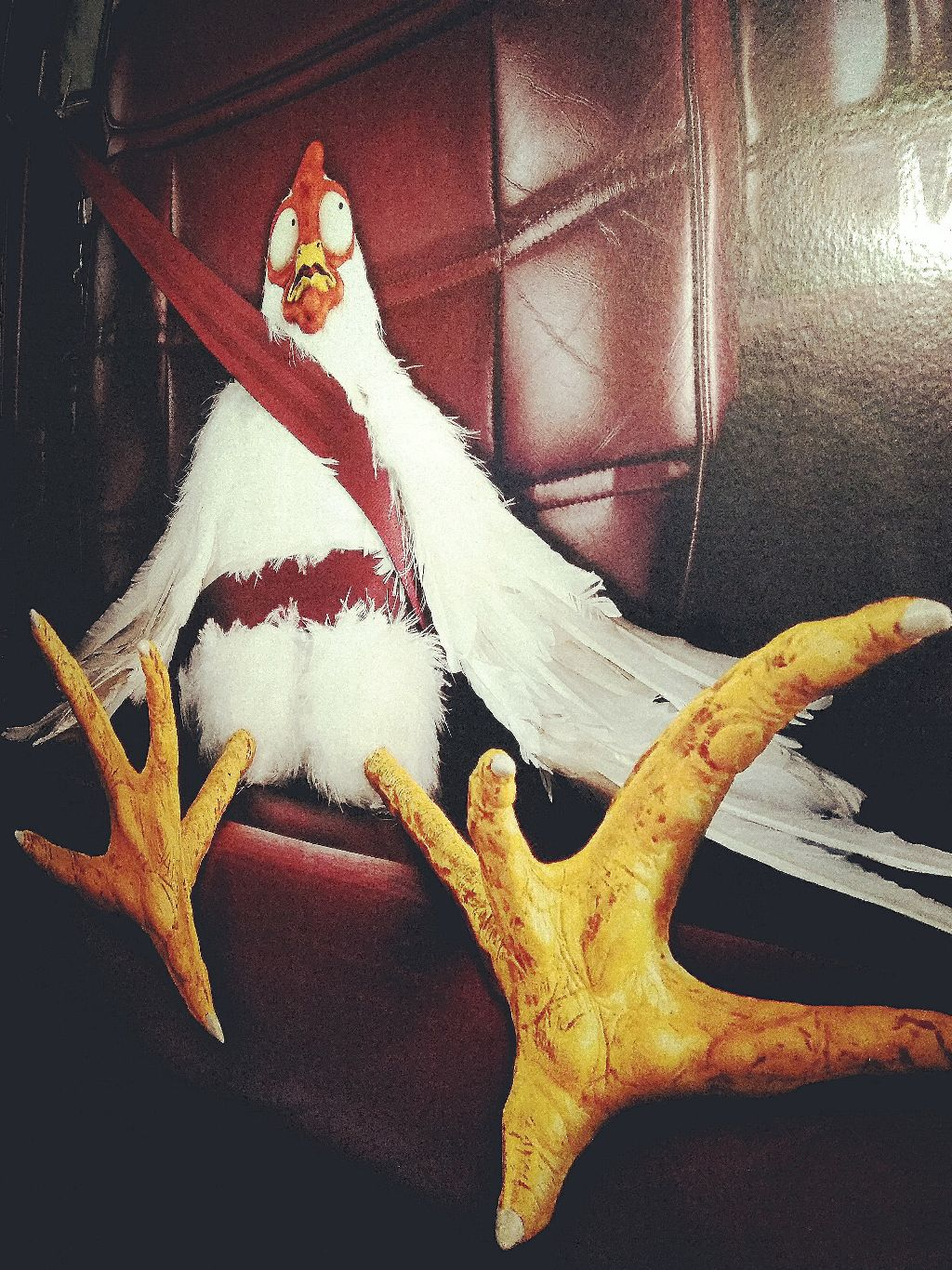 #remixit #chicken #funny #myphotography