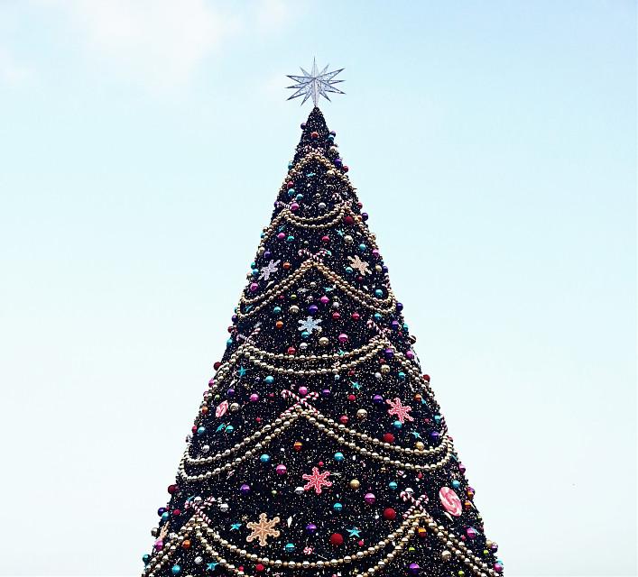 #christmas #christmastree #merrychristmas