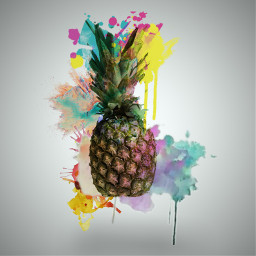freetoedit explosionofcolor colorsplash colorfull dialyinspiration